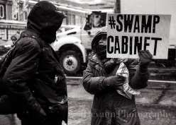 Swamp Cabinet