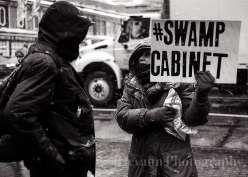 Swamp Cabinet